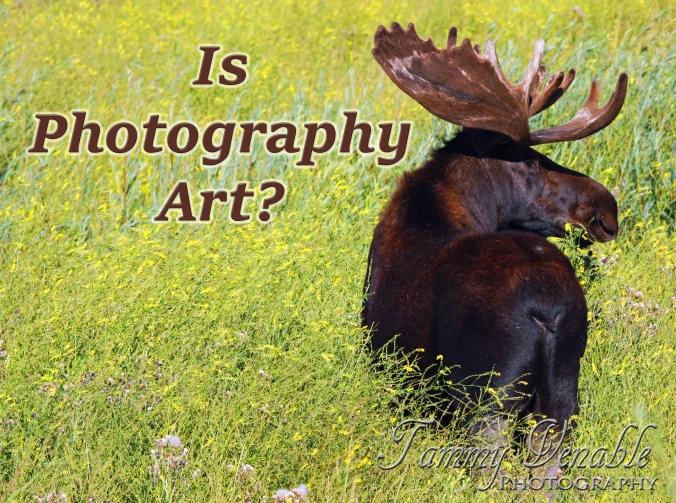 isphotographyart